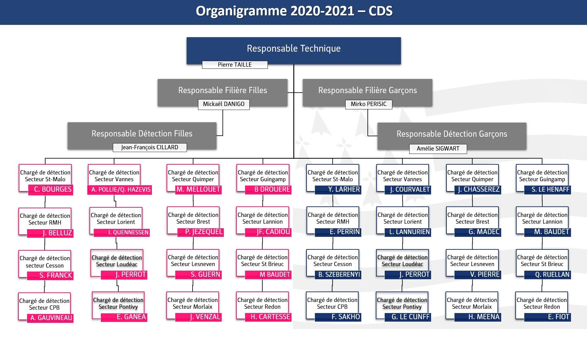 organigramme CDS